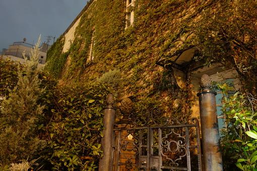 神戸 建物 建築物 葉 蔦 蔓 植物 緑 這う 歴史 伝統 観光 観光地 旅行 古い 自然 景観  門 錆びる 家 壁