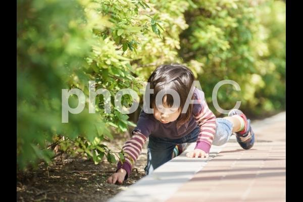 興味津々・何かを見つけた子供の写真