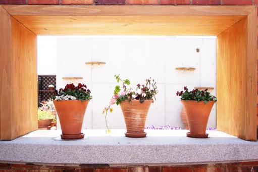 インテリア オブジェ 鉢 植物 花 光 窓辺 窓側 レンガ 窓枠 木目調 木 パーク 公園 建設 建築