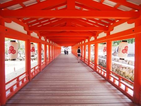 厳島神社 安芸の宮島 宮島 世界遺産 広島 赤 朱 朱色 廊下 神社 日本 日本の美 和 美しい 荘厳 厳か