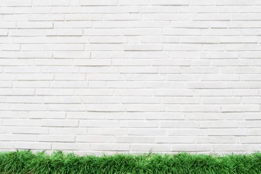 白いレンガの背景と新緑の芝の写真