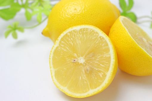 柑橘類 野菜 果物 れもん 食べ物 食材 新鮮 素材 きれい 鮮やか 無人 飲食 美味しい フレッシュ 材料 食品 健康 栄養 シンプル 収穫 とれたて 黄色 ビタミン 自然 白背景 白 フルーツ レモン 檸檬 輪切り 断面 カット 白バック ビタミンc 美容