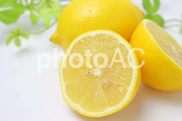 檸檬輪切りの写真