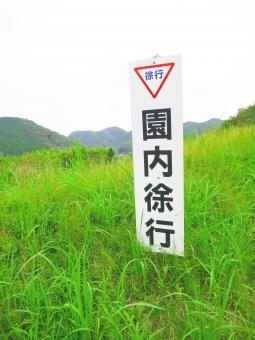 看板 徐行 運転 公園 園内 草原 サイン 標識