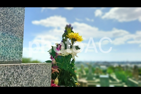 お墓と供花の写真