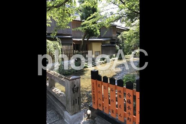 祇園白川 巽橋の写真