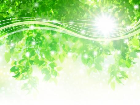 夏の太陽と新緑木漏れ日と流線型の抽象背景の写真