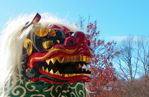 ししまい 正月 年賀 祝い 冬 祭り 1月 日本 japan 噛む 成長 子供 伝統 風呂敷 赤 シシ 踊り 舞う 2月 寒い 雪 winter 言い伝え 昔