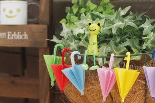 かわいい傘とカエルの写真