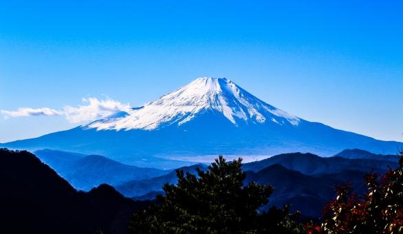 富士 富士山 丹沢 大山 世界遺産 日本 山梨 静岡 神奈川 雲 きれい 眺め 青 空 快晴 雪 木 季節 秋 冬 山 登山 眺め 湖 山岳 山脈