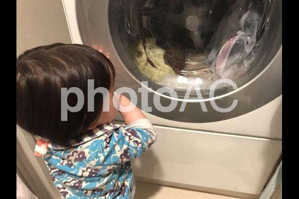 洗濯機を眺める赤ちゃん 2の写真