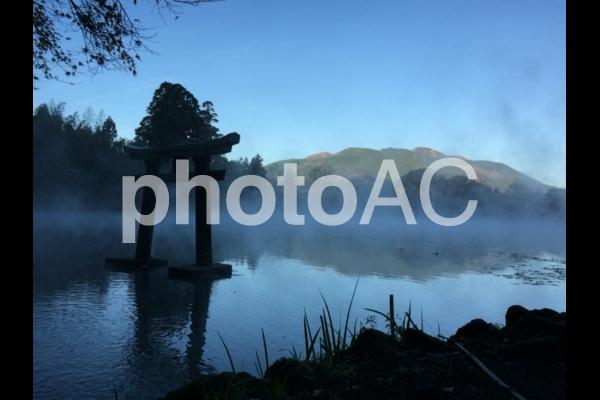 大分県湯布院の金鱗湖にある鳥居の写真