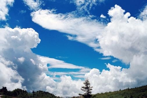 高原の夏の写真