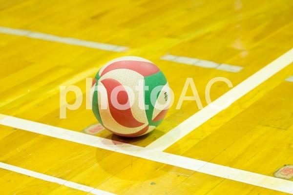 バレーボールのボールの写真