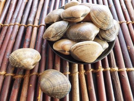 あさり アサリ 浅蜊 蛤仔 鯏 貝 貝殻 魚介類 魚介 新鮮 市場 鮮魚 貝類 和食 和 砂抜き 料理 調理 みそ汁 味噌汁 みそしる 汁物 あさり汁 アサリ汁 だし ダシ 健康 健康食品 たくさん 複数 酒蒸し 海の幸 美容 美容効果 栄養 魚貝 魚貝類