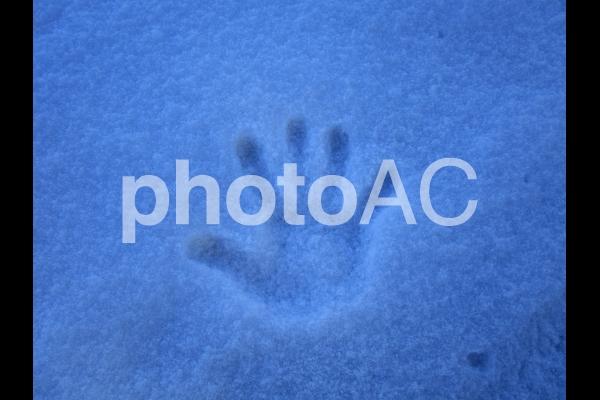 雪の手形の写真