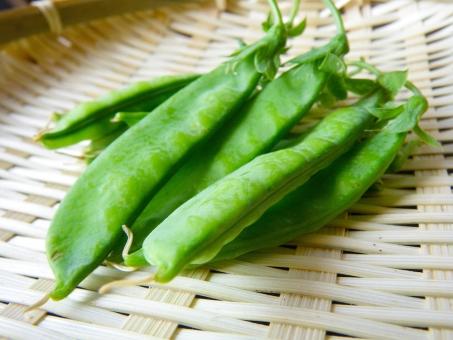 さやえんどう エンドウ豆 えんどう えんどう豆 豆 野菜 春 グリーンピース 新鮮 採りたて みどり