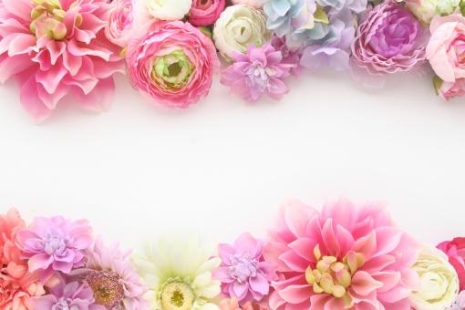 ふわふわ 花のフレーム ピンク系 1の写真
