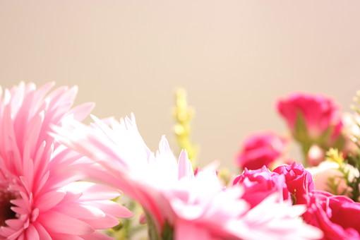 花     フラワーアレンジメント     ブーケ         淡い       母の日     メッセージカード     年中行事   ガーベラ  薔薇 ばら ガーベラ    生花     桃色     植物     行事     花束     イベント     パステルカラー        春