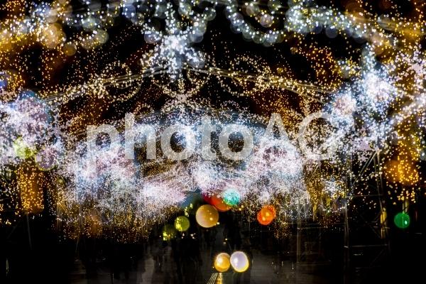 光の饗宴の写真