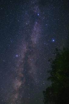 天の川 星座 星空 星野 星 夜空 七夕 おりひめ ひこぼし 夜 夏の大三角形 夏 夏空
