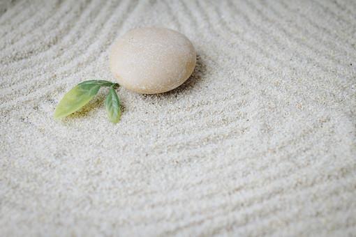 和 和風 禅イメージ 庭 石 枯山水 砂 砂紋 レーキ 日本 日本庭園 日本文化 庭園 わびさび 和寺 石庭 造園 伝統 白砂 風景 イメージ 京都  縁側 風景 緑 植物 線 葉 アップ