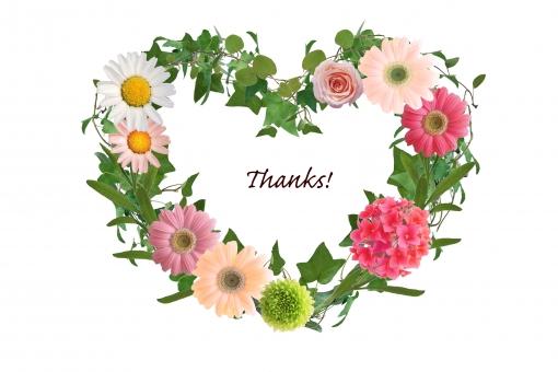 感謝 ありがとう 有難う 気持ち メッセージ 伝言 一言 お礼 英文字 英単語 単語 英語 ハート型 ハート リース 植物 花 ガーベラ 薔薇 バラ カランコエ アイビー グリーン 背景 テクスチャ 素材