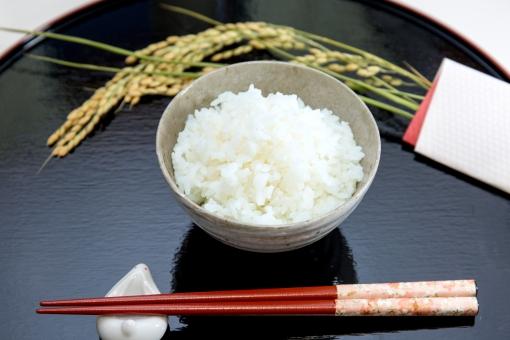 お茶碗 白米 お米 コシヒカリ 食べ物 料理 和食 和風 フード 食物 日本食 和風料理 日本 和 シンプル 食事 黒バック 新米 イメージ 箸 おはし はし 箸置き 農業 稲穂 稲 収穫 秋 お盆
