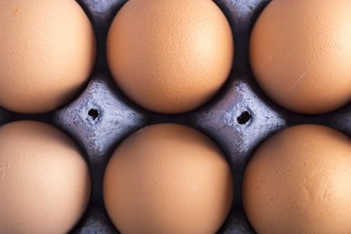 たまご 卵 玉子 タマゴ エッグ 楕円 卵色 ベージュ 料理 並べる 生き物 食べ物 食材 食料 置く 置いてある 物撮り 屋内 人物なし 上から 殻 斑点 6個 整然 複数 レシピ アップ ズーム 容器 パック パック詰め 紙パック 鶏 にわとり ニワトリ