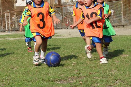 サッカー 子供 小学生 低学年 蹴る ユニフォーム オレンジ 芝生 グランド