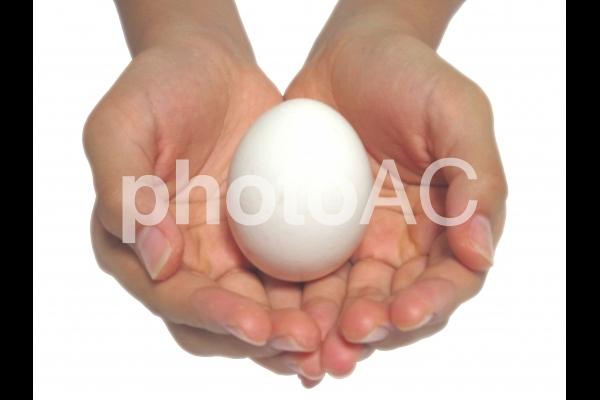 手と卵の写真