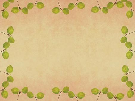 葉 木の葉 素材 葉脈 植物 自然 パターン 暖色 ナチュラル 暖かい 空間 余白 テクスチャ 質感 背景 背景素材 バックグラウンド テキストスペース コピースペース 二葉 双葉 新芽 発芽 芽 生える  緑 ベージュ 枠 フレーム 額 加工 写真加工 飾り枠