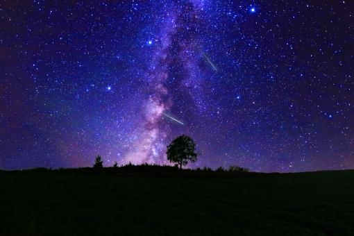 星空と草原の写真