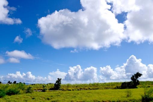 波照間島 波照間 島 離島 沖縄 八重山 夏 青空 空 風景 自然 雲