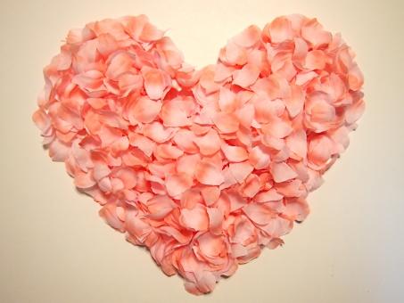 桜 さくら サクラ ハート ハート型 花びら 桜の花びら 春 背景 背景素材 季節 四季 花 春らしい ウキウキ ワクワク ドキドキ ときめく 素敵な 女性 かわいい カワイイ 可愛い バレンタイン