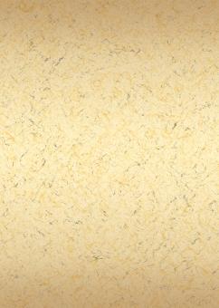 金色 ゴールド 金箔 テクスチャ テクスチャー パンフレット チラシ カタログ 表紙 背景 バック バックグラウンド japan paper 和風 和柄 日本風 日本 伝統 贈答品 お盆 お中元 正月 慶事 弔事 お祝い 新年 正月 年賀状 お正月