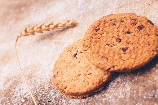 クッキー アメリカ ビスケット 手作り ホームメイド 焼く 簡単 お菓子 焼き菓子 スナック スイーツ おやつ 間食 デザート チョコ チョコチップ サクサク しっとり ほろほろ 丸型 美味しい 甘い 茶色 高カロリー 麦 小麦 材料 自然