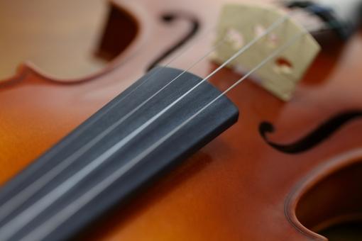 楽器 弦楽器 バイオリン 小物 音楽 クラッシック フォルム 形 ミュージック コンサート 演奏会 プログラム 木 シンフォニー 室内楽 ハーモニー 音 レッスン 練習 教室 パンフレット チケット 募集 趣味 習い事