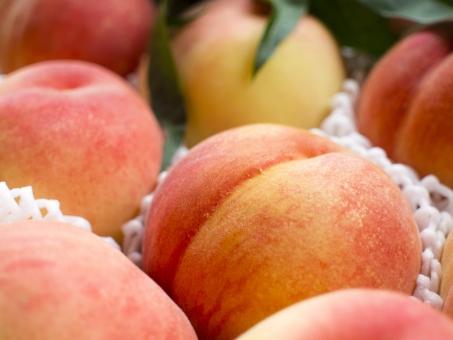果物 フルーツ 贈答品 夏 桃