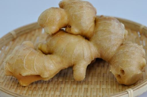 生姜 ショウガ しょうが ジンジャー 薬味 生鮮 青果 スパイス