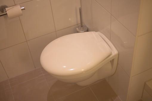 トイレ トイレット 厠 かわや 手洗 御手洗い 手洗い場 洗面所 手洗場 手洗い 隠所 便所 便器 便座 室内 屋内 水回り 建築 内装 空間 生活 環境 ライフスタイル 家 個室 バスルーム 設備 清潔 排泄