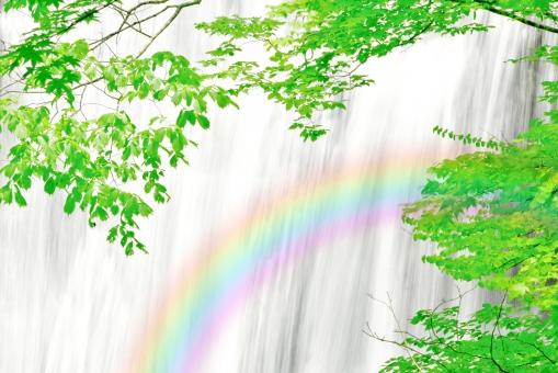 滝の流れ 涼しい滝 緑の葉 夏 滝 植物 植木 樹 木 樹木 緑 自然 屋外 風景 景色 葉っぱ 葉 茂る 森 水 落ちる 流れる マイナスイオン 虹 レインボー 七色 七彩 水しぶき 涼しさ