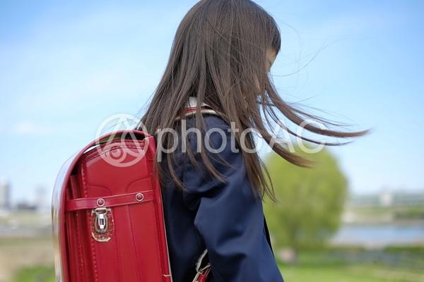 小学生の女の子55の写真