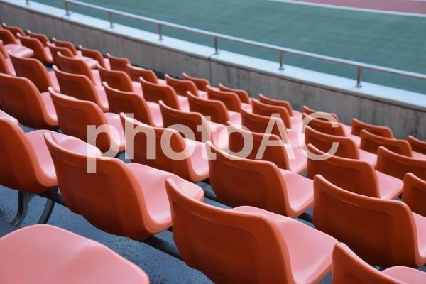 競技場スタジアムの写真