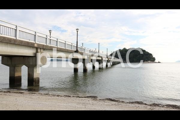 蒲郡 竹島園地、海岸の波打ち際と竹島の写真