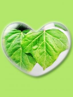 ハート はーと heart 素材 背景 アイコン ラブ love 愛 ロマンチック バレンタイン フレーム 枠 葉 ミドリ 緑 みどり グリーン green コピースペース クリスタル風