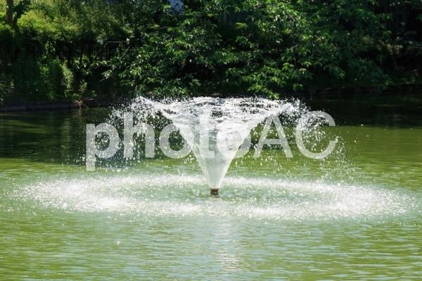 噴水の写真