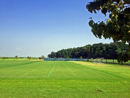 夏 グランド サッカー 緑 芝 青空 夏空 群青 紺碧 木 風 自然 風景 景色 運動場