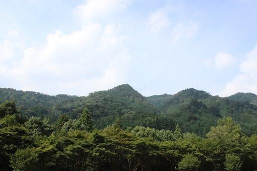 自然 風景 屋外 外 野外 山 山林 木 樹木 晴れ 晴天 森 林 山並み 望遠 遠景 山々 緑 深緑 新緑 空 雲 青空 景色 植物 山間 山あい 生い茂る 茂る 背景 背景素材 環境