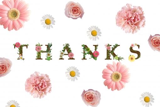 ありがとう 有難う 感謝 お礼 気持ち メッセージ 伝言 一言 グリーティングカード テクスチャ 背景 素材 英単語 単語 英語 文字 アルファベット 花 ガーベラ バラ 薔薇 ばら 緑 グリーン